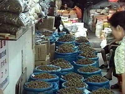 China-2001-074