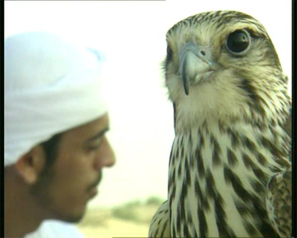 Dubai092