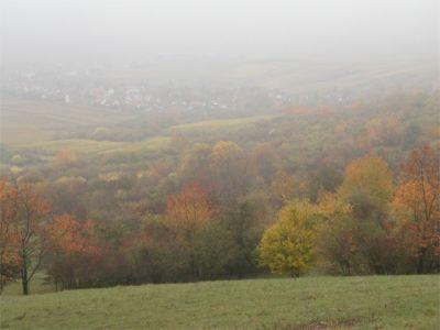 Kloster-Jakobsberg0221