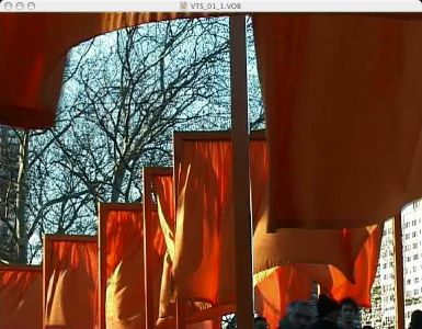 Christo-the-gates-039