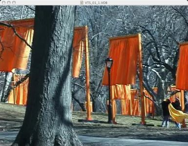 Christo-the-gates-080
