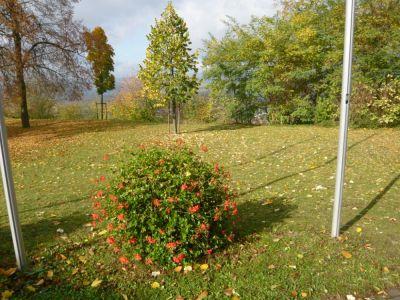 Jakobsberg2008024